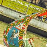 Porto trasy samochodowe po Portugalii okolicy Porto dolina Douro Valley auto gdzie jechać co zobaczyć przewodnik polski opis trasa mapa (1 z 1)