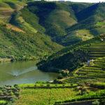 Porto trasy samochodowe po Portugalii okolicy Porto dolina Douro Valley auto gdzie jechać co zobaczyć przewodnik polski opis trasa mapa 2