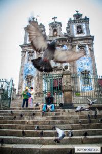 Porto Polski Przewodnik po Porto Portugalia Co warto zobaczyć zabytki i atrakcje zwiedzanie trasy lokalny przewodnik Oporto po<script async src=